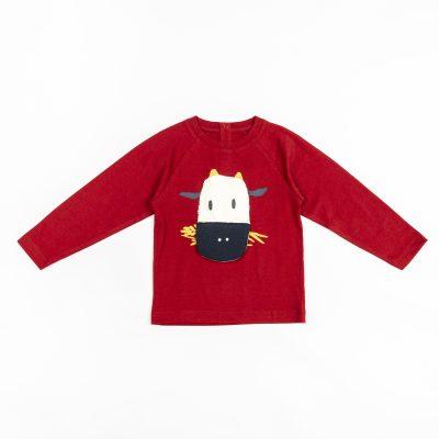 Αγόρι | 0-36 Μηνών| Μπλούζες | Winter